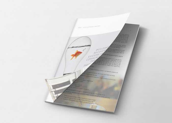Hydra Marketing brochure design