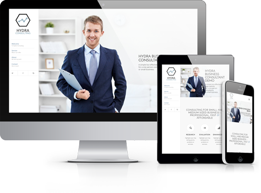 Websites for Consultants by Hydra Marketing, Guiseley, Halifax, Otley